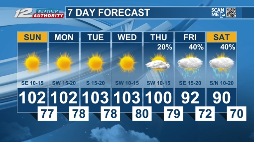 7 Day Forecast